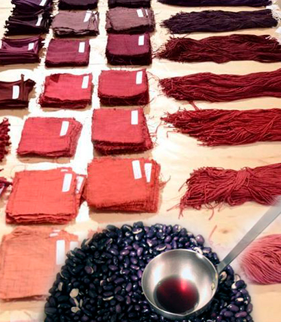 Workshop Tintes Naturales